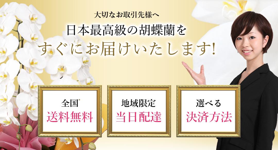 大切なお取引先様へ 日本最高級の胡蝶蘭をすぐにお届けいたします 全国送料無料 地域限定当日配達 選べる決済方法