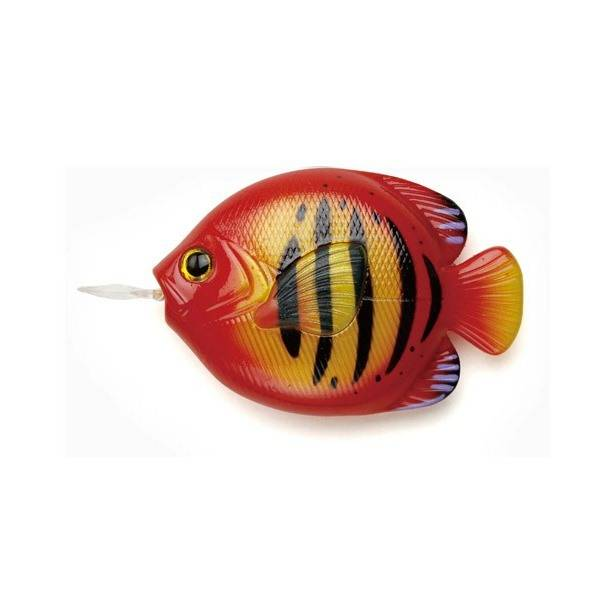 [FiiiiiSH]FISH MEASURE-FLAME ANGELFISH/メジャー