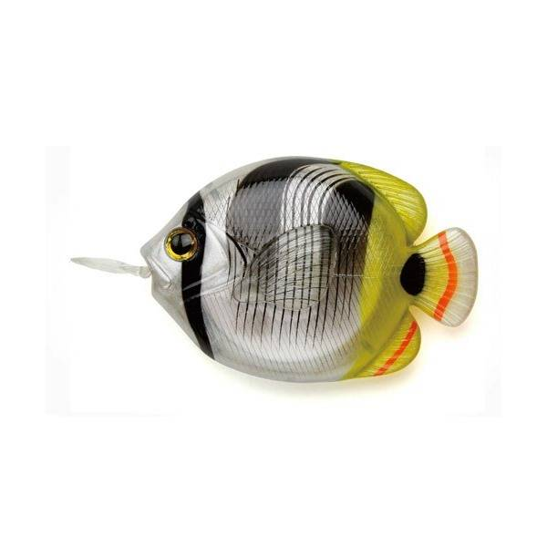 [FiiiiiSH]FISH MEASURE-BUTTERFLYFISH/メジャー